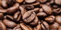 Torrefazione Spcielty Coffee